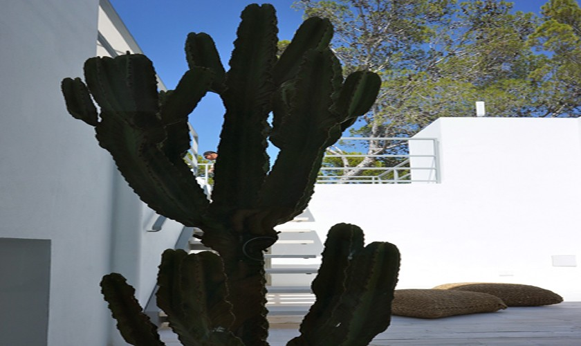 Ambiente Ferienvilla Ibiza Meerblick IBZ 20