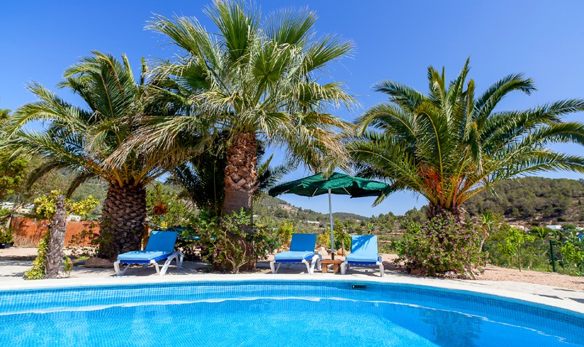 Pool und Palmen Finca Ibiza 5 Personen IBZ 22