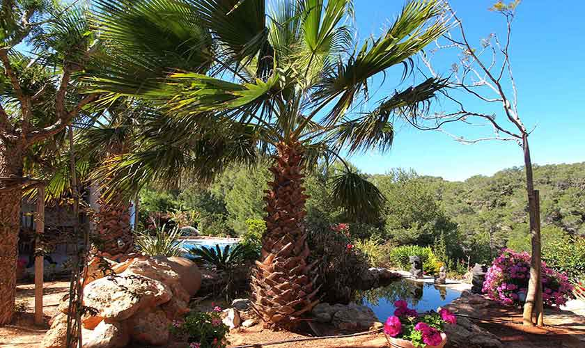 Garten Villa Ibiza 10 Personen IBZ 24