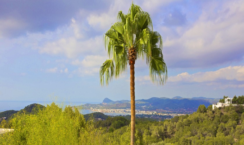 Blick von der Finca Ibiza 10 Personen IBZ 25