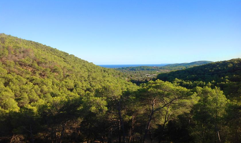 Blick in die Landschaft Ferienhaus Ibiza 6 Personen IBZ 45