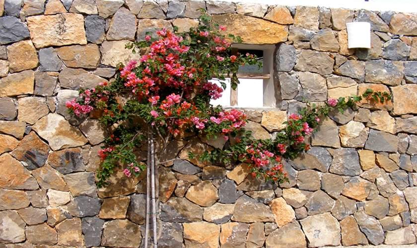 Naturstein Ferienfinca Ibiza 10 Personen IBZ 46