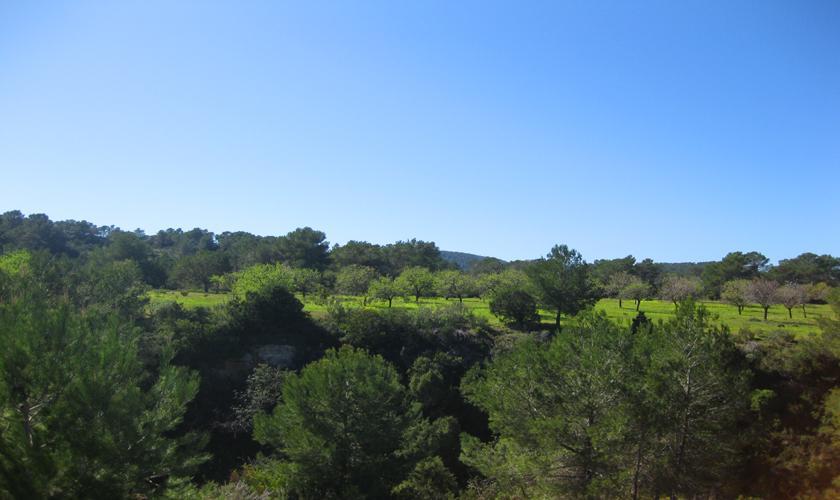 Blick in die Landschaft Finca Ibiza 2 Personen IBZ 75