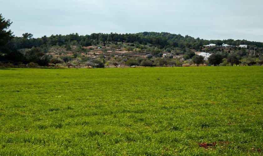 Blick Landschaft Ferienfinca  Ibiza 6 Personen IBZ 96