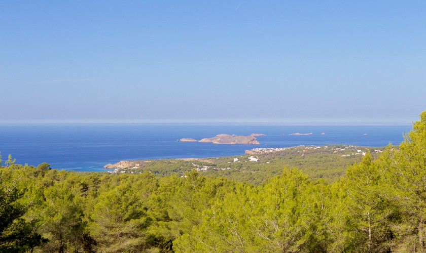 Blick auf das Meer Poolvilla Ibiza IBZ 14