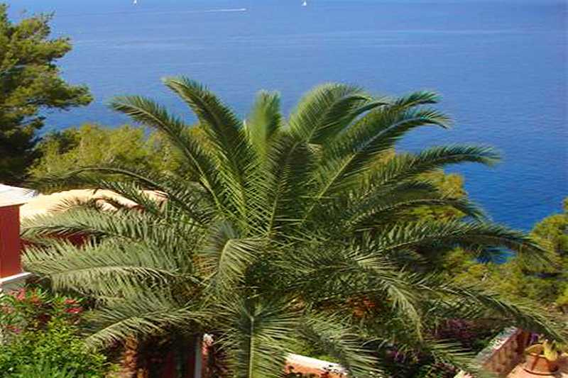 Impression Cala Llamp Ferienhaus Mallorca Westküste PM 103 Nr. 70B