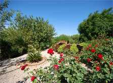 Garten Finca Mallorca Süden PM 160