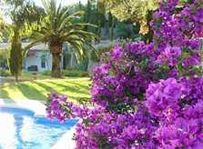 Finca mit Blumen Finca Mallorca Westküste PM 225