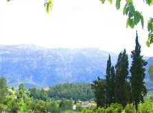 Landschaft Finca Mallorca PM 225