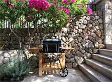 Grillplatz Finca Mallorca Valldemossa PM 240