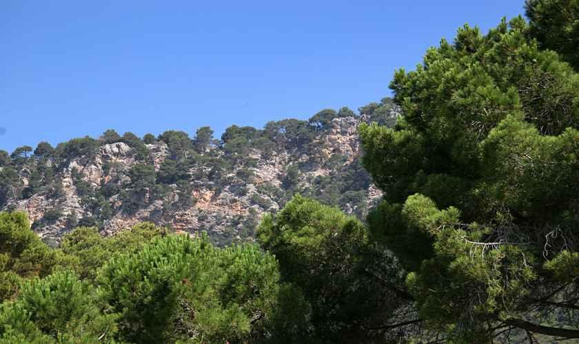 Blick Ferienfinca Mallorca Valldemossa PM 240