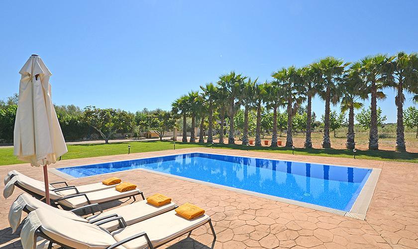 Pool und Palmen Finca Mallorca Norden PM 3034