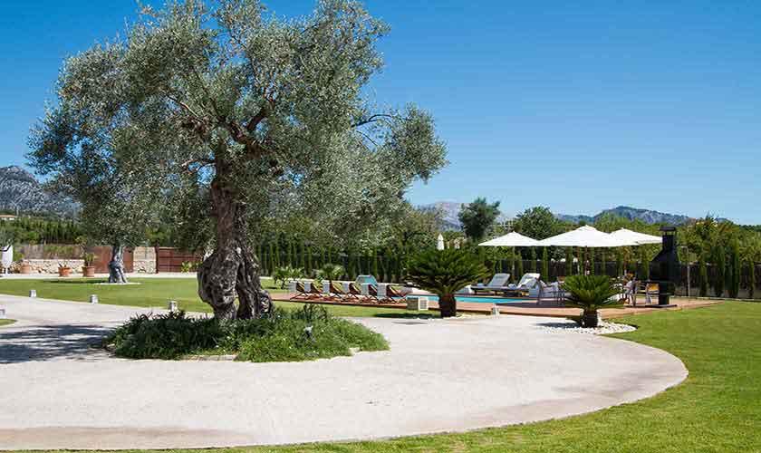 Garten Ferienfinca Mallorca PM 3115