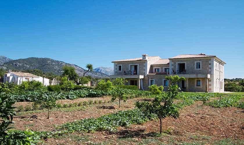 Blick auf die Ferienfinca Mallorca PM 3115