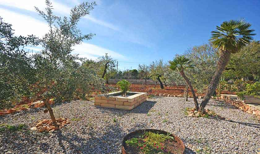 Garten Finca Mallorca Norden PM 3220