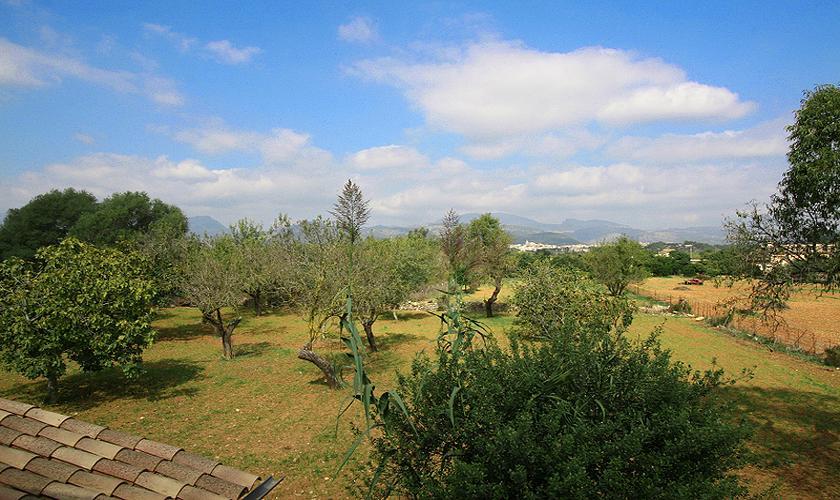 Blick Finca Mallorca PM 325