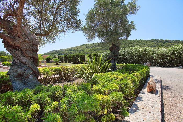 Garten Finca Mallorca  mit Pool im Norden PM 3403 für 6 Personen