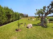 Wiese Finca Mallorca  mit Pool im Norden PM 3403 für 6 Personen