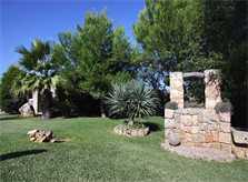 Garten Finca Mallorca mit Pool für 4 Personen PM 3409