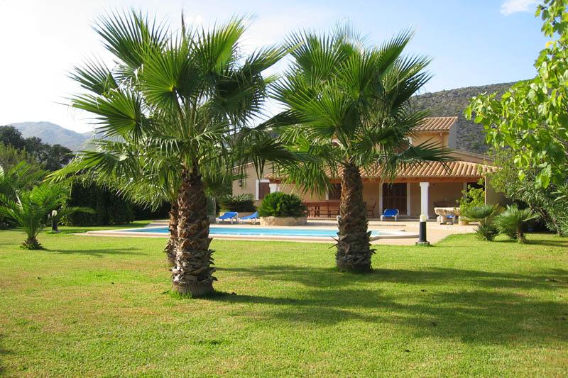Palmen im Garten der Finca Mallorca Norden PM 3411