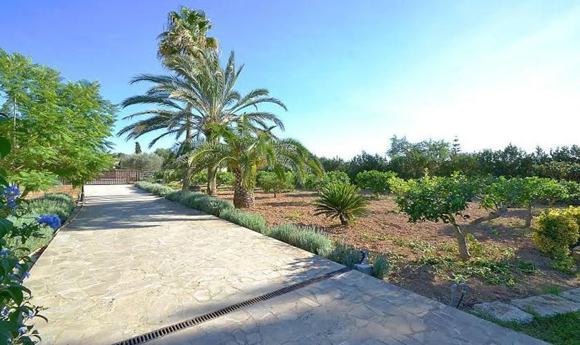 Einfahrt zur Finca Mallorca PM 3705