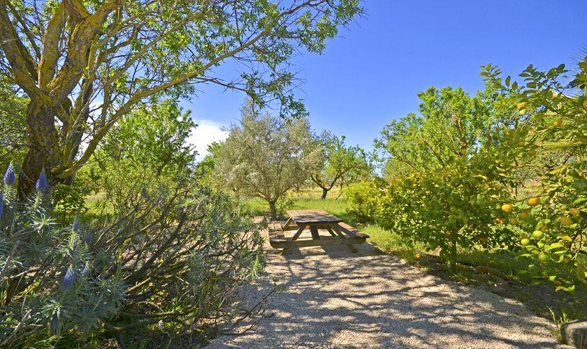 Garten Finca Mallorca PM 3707