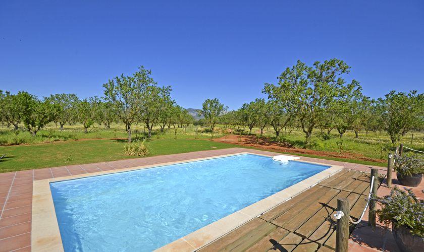 Poolblick Ferienvilla Mallorca PM 3707