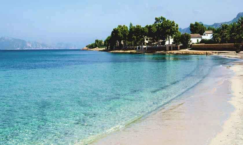 Blick auf den Strand Appartement Mallorca  PM 3721