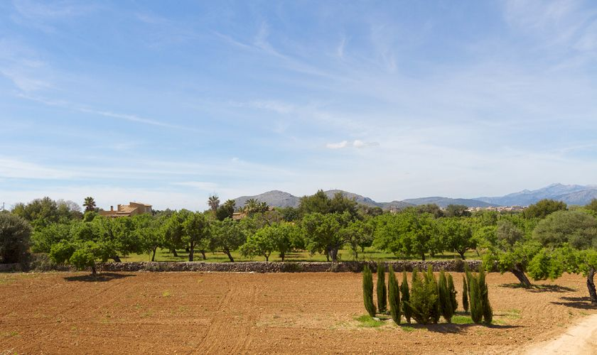 Blick in die Landschaft Ferienfinca Mallorca PM 3806