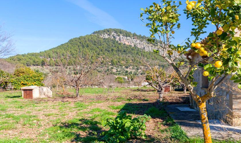 Blick vom Ferienhaus Mallorca für 2 Personen PM 3815