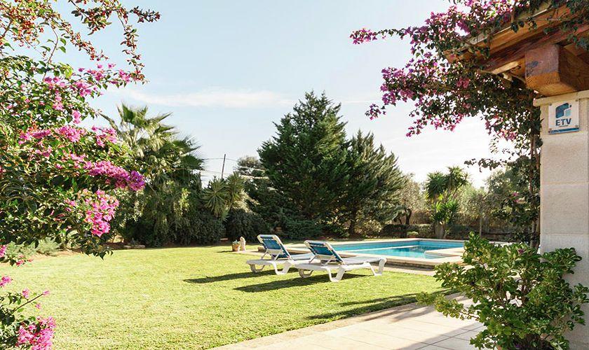 Pool und Rasen Finca Mallorca PM 3843