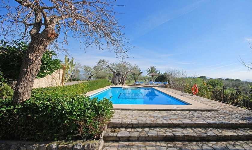 Poolblick Finca Mallorca PM 384 für 10 Personen
