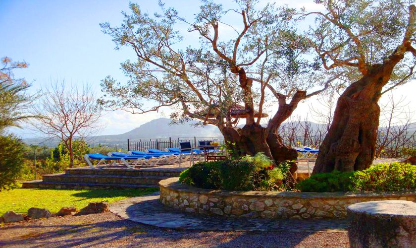 Terrasse Finca Mallorca PM 384 für 10 Personen