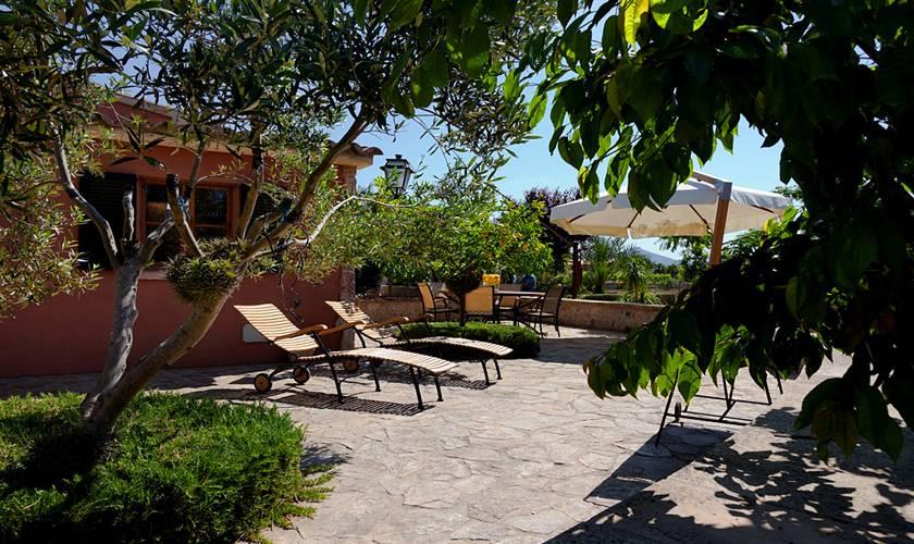 Garten Ferienhaus Mallorca Pollensa PM 397