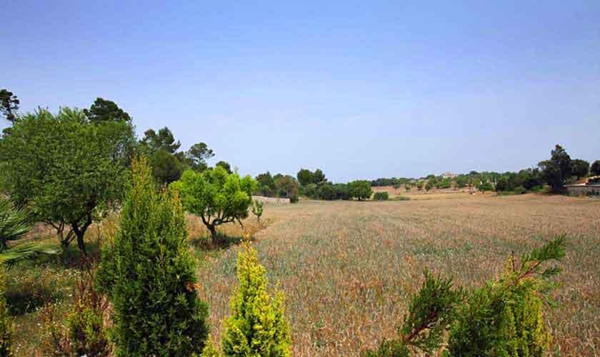 Blick in die Landschaft Finca Mallorca Norden PM 430