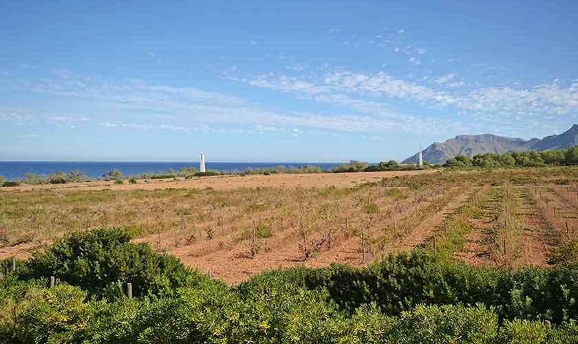 Landschaft Ferienhaus Mallorca Nordküste PM 450