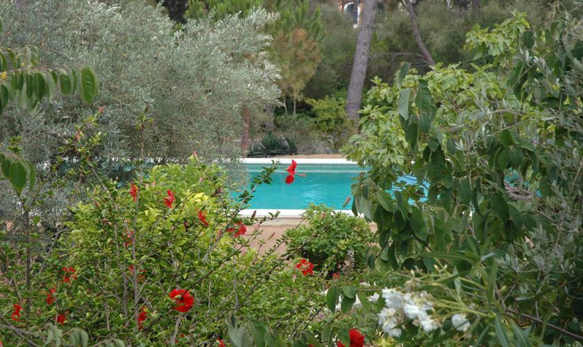 Pool Villa Mallorca Costa de Canyamel PM 507