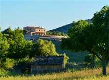 Blick auf die Finca Mallorca PM 520