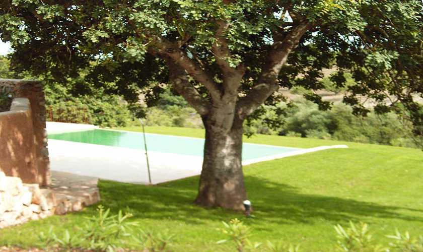 Garten Finca Mallorca 4 Personen PM 523