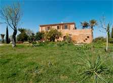 Blick auf die Finca Mallorca PM 5265