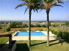 Blick und Pool Finca Mallorca PM 5265