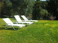 Rasen und Liegen Ferienfinca Mallorca Nordosten PM 5372