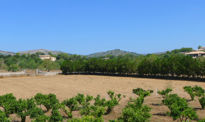 Blick vom Ferienhaus Mallorca PM 5428