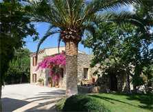 Blick auf die Finca Mallorca PM 5428