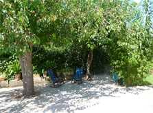 Garten Ferienhaus Mallorca PM 5428