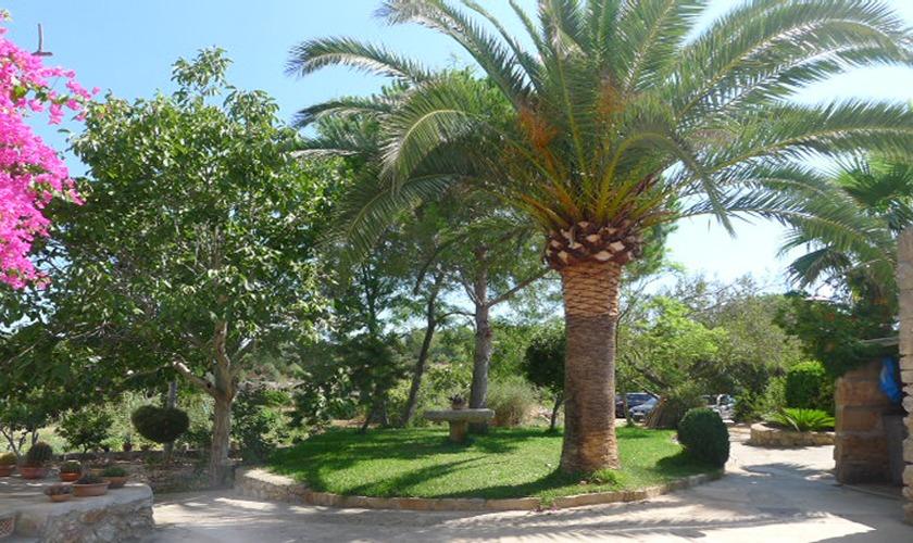 Palmen und Garten der Finca Mallorca PM 5428