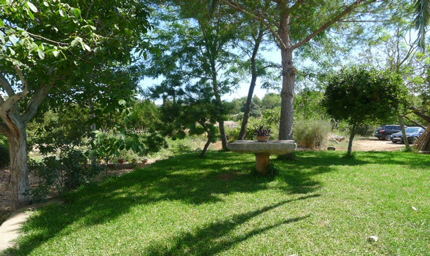 Garten Finca Mallorca PM 5428