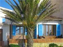 Blick auf das Ferienhaus am Strand Mallorca PM 547