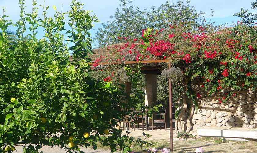 Blick auf die Ferienfinca Mallorca für 4 Personen PM 5773