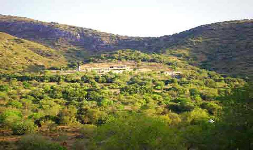 Blick auf die Finca Mallorca PM 585